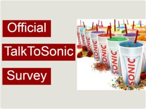 Talktosonic Survey